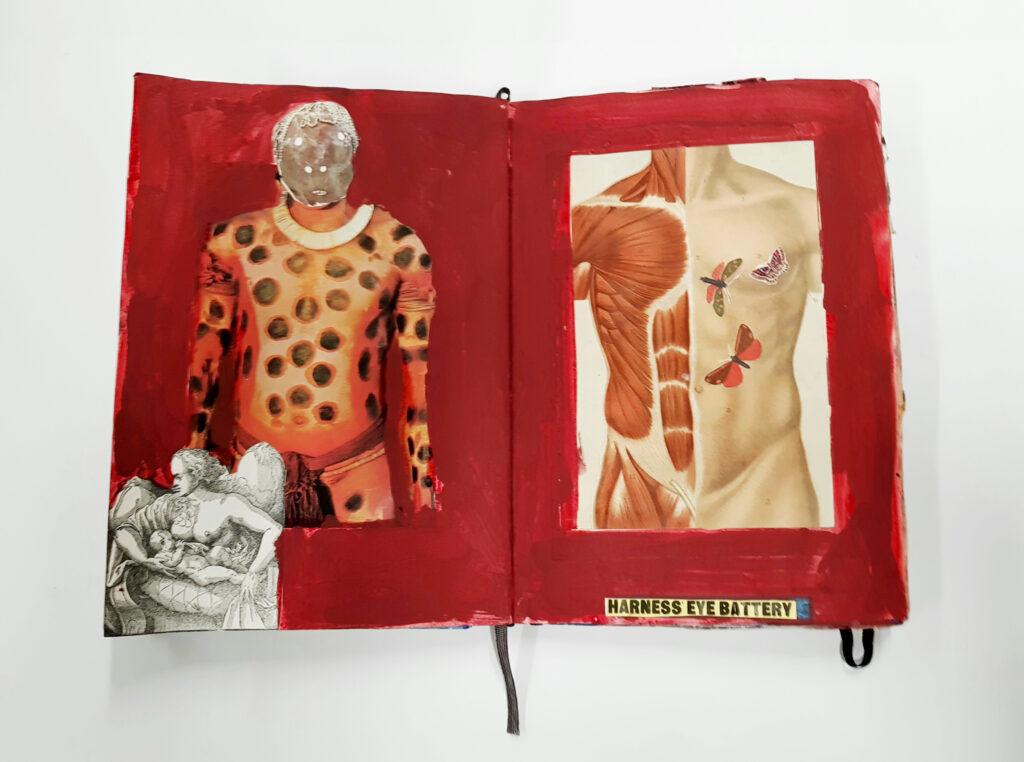 Shaun Caton artist, painter & collagist's books